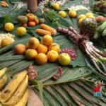 ¿Alimentos orgánicos o transgénicos? Seguridad y soberanía alimentaria: dignidad humana