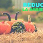 Reduce la ansiedad comiendo Tipos de calabaza de manera natural (súper alimento)